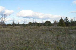 Photo 4: 2541 Harrigan Drive in Ramara: Brechin Property for sale : MLS®# S4281626