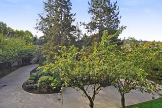 "Photo 14: 311 9847 MANCHESTER Drive in Burnaby: Cariboo Condo for sale in ""Barclay Woods"" (Burnaby North)  : MLS®# R2317069"