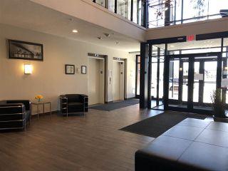 Photo 2: 217 1144 ADAMSON Drive in Edmonton: Zone 55 Condo for sale : MLS®# E4137686