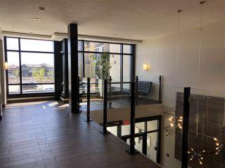 Photo 4: 217 1144 ADAMSON Drive in Edmonton: Zone 55 Condo for sale : MLS®# E4137686