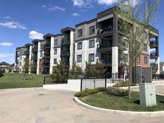 Photo 21: 217 1144 ADAMSON Drive in Edmonton: Zone 55 Condo for sale : MLS®# E4137686