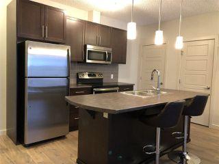 Photo 5: 217 1144 ADAMSON Drive in Edmonton: Zone 55 Condo for sale : MLS®# E4137686