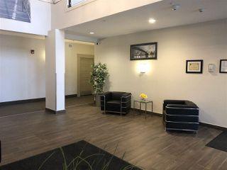 Photo 3: 217 1144 ADAMSON Drive in Edmonton: Zone 55 Condo for sale : MLS®# E4137686