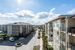 "Photo 1: C427 20211 66 Avenue in Langley: Willoughby Heights Condo for sale in ""The Elements"" : MLS®# R2326958"