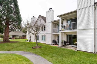 Photo 1: 11 12915 16 Avenue in Surrey: Crescent Bch Ocean Pk. Townhouse for sale (South Surrey White Rock)  : MLS®# R2352172