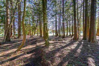 Photo 18: 6342 ALDERWOOD Lane in Delta: Sunshine Hills Woods House for sale (N. Delta)  : MLS®# R2351695