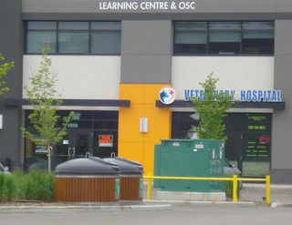 Photo 1: 00 00 in Edmonton: Zone 03 Business for sale : MLS®# E4162892