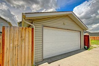 Photo 50: 68 TARALAKE Street NE in Calgary: Taradale Detached for sale : MLS®# C4256215