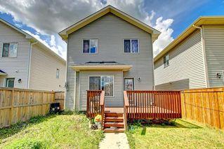 Photo 48: 68 TARALAKE Street NE in Calgary: Taradale Detached for sale : MLS®# C4256215