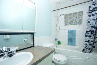 Photo 13: 10623 42 Street in Edmonton: Zone 19 House for sale : MLS®# E4165713