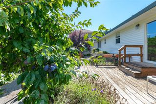 Photo 32: 711 Moralee Dr in : CV Comox (Town of) House for sale (Comox Valley)  : MLS®# 854493