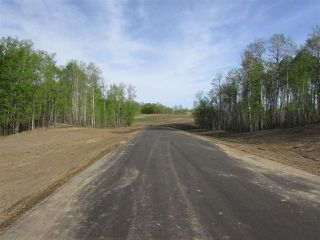 Photo 8: 14 53214 RGE RD 13 Road: Rural Parkland County Rural Land/Vacant Lot for sale : MLS®# E4099592