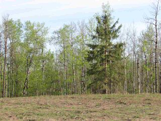 Photo 2: 14 53214 RGE RD 13 Road: Rural Parkland County Rural Land/Vacant Lot for sale : MLS®# E4099592