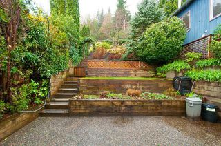 Photo 17: 1964 CLIFFWOOD Road in North Vancouver: Deep Cove House for sale : MLS®# R2258110