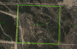 Photo 1: TWP 630 RR 250: Rural Athabasca County Rural Land/Vacant Lot for sale : MLS®# E4128861