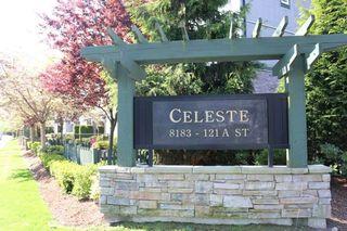 "Main Photo: 206 8183 121A Street in Surrey: Queen Mary Park Surrey Condo for sale in ""CELESTE"" : MLS®# R2313002"