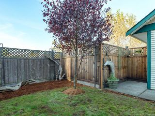 Photo 33: 5C 851 5th St in COURTENAY: CV Courtenay City Row/Townhouse for sale (Comox Valley)  : MLS®# 800448