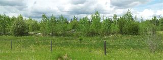 Photo 11: RR41 & Twp 460: Rural Wetaskiwin County Rural Land/Vacant Lot for sale : MLS®# E4134997