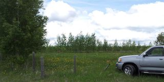 Photo 14: RR41 & Twp 460: Rural Wetaskiwin County Rural Land/Vacant Lot for sale : MLS®# E4134997