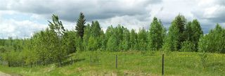 Photo 12: RR41 & Twp 460: Rural Wetaskiwin County Rural Land/Vacant Lot for sale : MLS®# E4134997