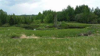 Photo 2: RR41 & Twp 460: Rural Wetaskiwin County Rural Land/Vacant Lot for sale : MLS®# E4134997