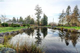 Photo 24: 8870 Randys Pl in SOOKE: Sk West Coast Rd Single Family Detached for sale (Sooke)  : MLS®# 804147