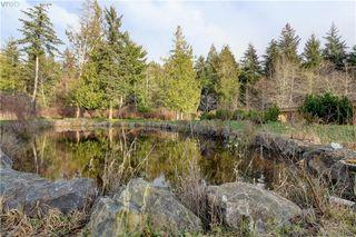 Photo 25: 8870 Randys Pl in SOOKE: Sk West Coast Rd Single Family Detached for sale (Sooke)  : MLS®# 804147