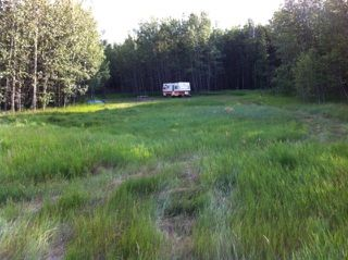 Photo 7: 594 Rge Rd 245: Rural Westlock County Rural Land/Vacant Lot for sale : MLS®# E4152106