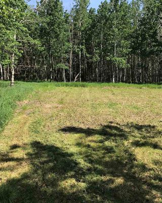 Photo 9: 594 Rge Rd 245: Rural Westlock County Rural Land/Vacant Lot for sale : MLS®# E4152106