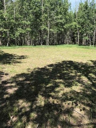 Photo 11: 594 Rge Rd 245: Rural Westlock County Rural Land/Vacant Lot for sale : MLS®# E4152106