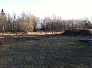 Photo 6: 594 Rge Rd 245: Rural Westlock County Rural Land/Vacant Lot for sale : MLS®# E4152106