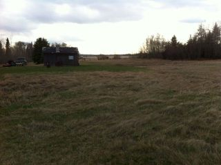 Photo 5: 594 Rge Rd 245: Rural Westlock County Rural Land/Vacant Lot for sale : MLS®# E4152106