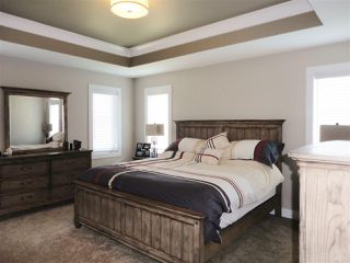 Photo 13: 12 HEWITT Circle: Spruce Grove House for sale : MLS®# E4156425