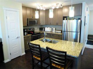 Photo 8: 520 EBBERS Way in Edmonton: Zone 02 House for sale : MLS®# E4198125