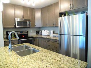 Photo 6: 520 EBBERS Way in Edmonton: Zone 02 House for sale : MLS®# E4198125
