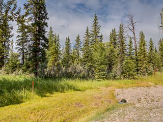Photo 5: 23-34364 RANGE ROAD 42 in : Rural Mountain View County Land for sale (Mountain View)