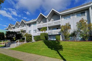 "Main Photo: 302 2055 SUFFOLK Avenue in Port Coquitlam: Glenwood PQ Condo for sale in ""SUFFOLK MANOR"" : MLS®# R2482608"