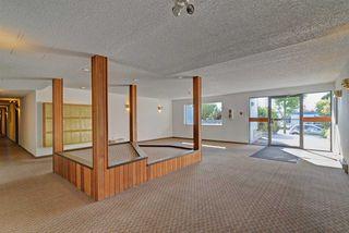 "Photo 19: 302 2055 SUFFOLK Avenue in Port Coquitlam: Glenwood PQ Condo for sale in ""SUFFOLK MANOR"" : MLS®# R2482608"
