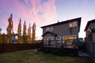 Photo 31: 79 Wentworth Crescent SW in Calgary: West Springs Detached for sale : MLS®# A1043632