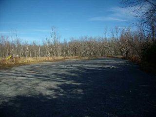 Photo 4: 2559 Lakeshore Drive in Ramara: Rural Ramara House (Bungalow) for sale : MLS®# X2789686