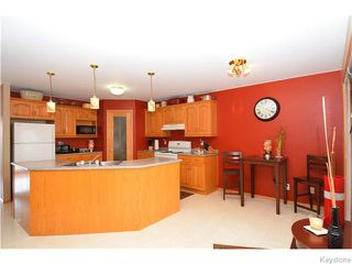 Photo 5: 43 Blue Mountain Road in WINNIPEG: Manitoba Other Residential for sale : MLS®# 1528725