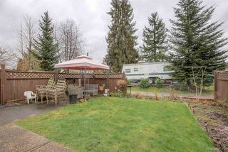 Photo 17: 2244 WELCHER Avenue in Port Coquitlam: Central Pt Coquitlam House for sale : MLS®# R2041134