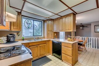 Photo 7: 2244 WELCHER Avenue in Port Coquitlam: Central Pt Coquitlam House for sale : MLS®# R2041134