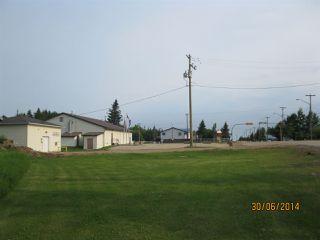 Photo 6: 112 3 Street: Blue Ridge Vacant Lot for sale : MLS®# E4031016