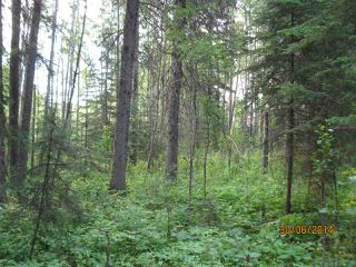 Photo 3: 112 3 Street: Blue Ridge Vacant Lot for sale : MLS®# E4031016