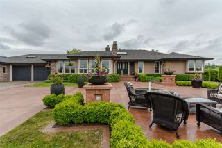 "Photo 1: 31150 POLAR Avenue in Abbotsford: Bradner House for sale in ""POLAR ESTATES"" : MLS®# R2142628"