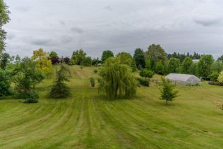 "Photo 19: 31150 POLAR Avenue in Abbotsford: Bradner House for sale in ""POLAR ESTATES"" : MLS®# R2142628"