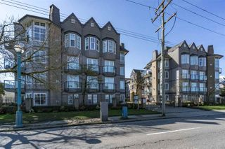 "Photo 1: 110 20200 56 Avenue in Langley: Langley City Condo for sale in ""THE BENTLEY"" : MLS®# R2155077"