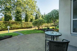 """Photo 20: 109 33731 MARSHALL Road in Abbotsford: Central Abbotsford Condo for sale in """"Stephanie Place"""" : MLS®# R2199821"""