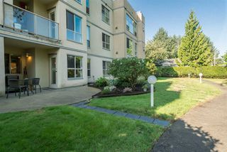 """Photo 19: 109 33731 MARSHALL Road in Abbotsford: Central Abbotsford Condo for sale in """"Stephanie Place"""" : MLS®# R2199821"""
